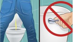 Furán hangzik, de logikus: Ezért ne húzd le a WC-t, miután elvégezted a dolgodat