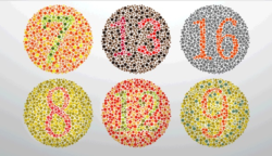 Melyik számot látod a körökben a legjobban?