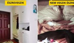 13 dolog a lakásodban, ami vendégeidnek azonnal szemet szúr