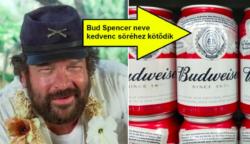 10 izgalmas dolog a legendás pofonosztóról, Bud Spencerről
