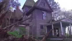 Az erdő fölött röptette drónját, amikor fák között rábukkant erre az elhagyatott házra: valóságos csoda tárult a szeme elé