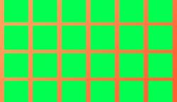 95-ből 1 ember találja meg elsőre azt a négyzetet, ami színárnyalatban eltér a többitől